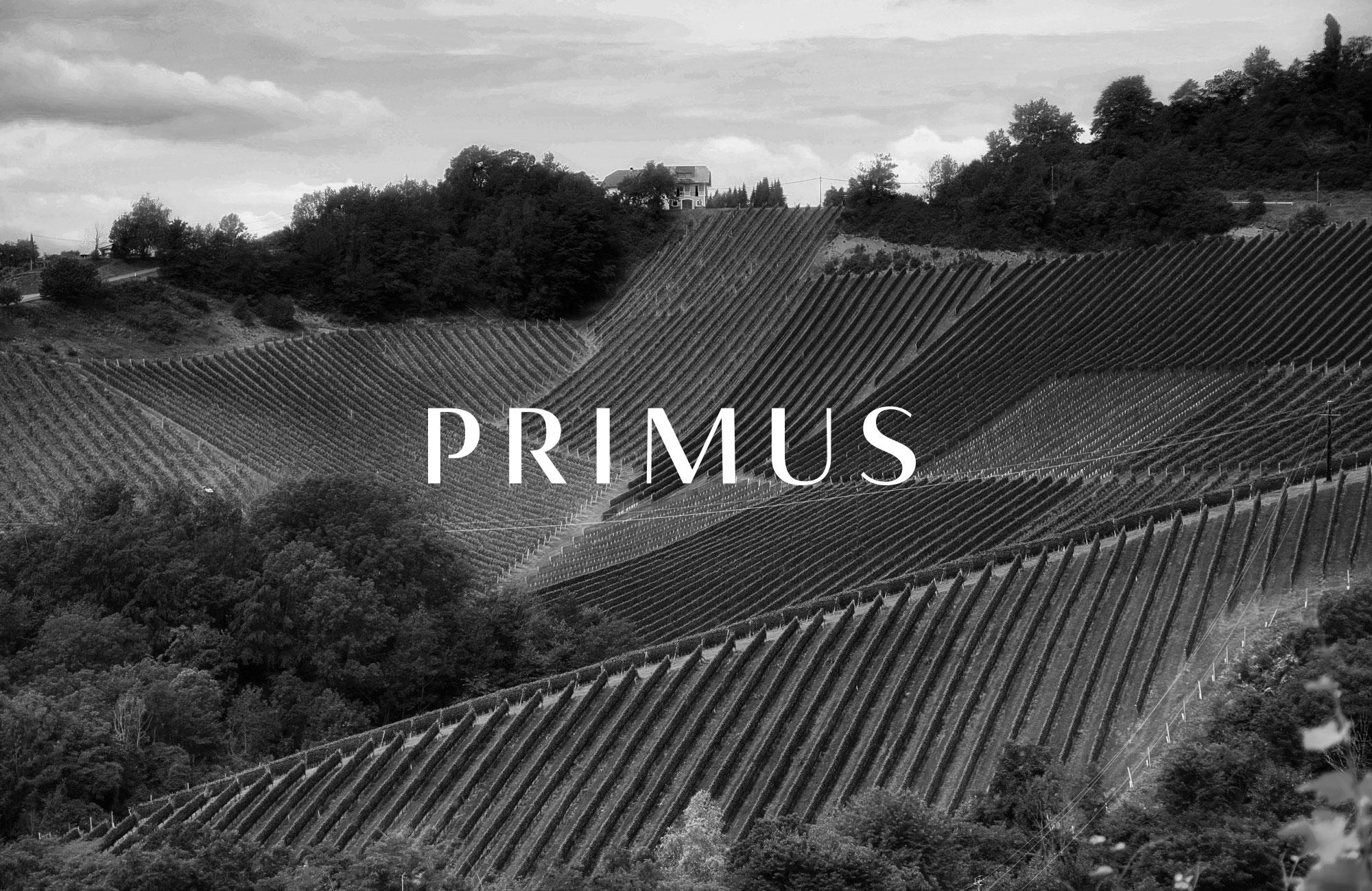 Weingut Primus Logo